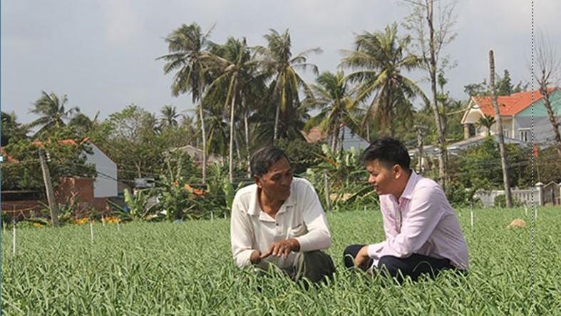 Ông Dương Văn Nhiều (xã An Hải, huyện Lý Sơn, Quảng Ngãi) chia sẻ về mô hình trồng tỏi với cán bộ ngân hàng