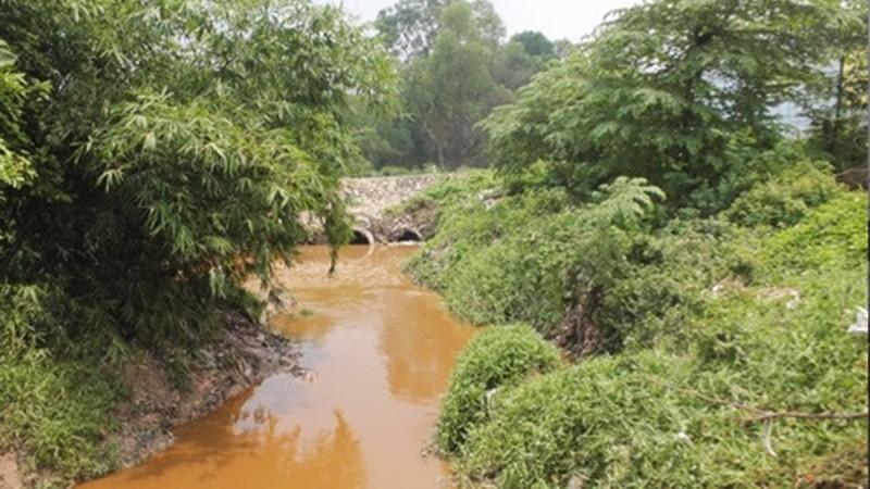 Kiến nghị xử lý nước thải ô nhiễm tại Dự án Suối Nhum (TP Hồ Chí Minh)