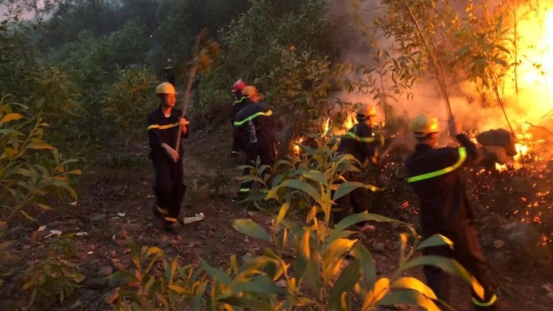 6 ngày căng mình dập lửa cứu rừng Nghệ An