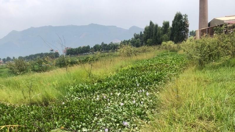 Lục Nam, Bắc Giang: Bao giờ giải quyết dứt điểm khiếu nại của người dân?