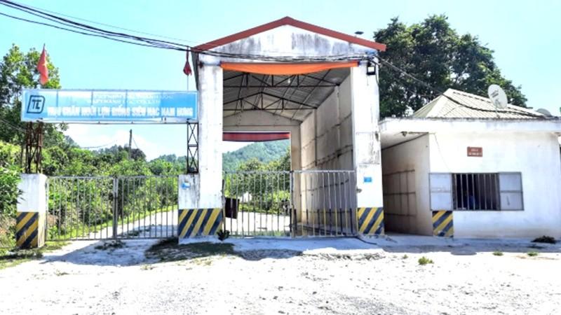 Trại lợn bị phản ánh ô nhiễm. Ảnh: Việt Khánh/nongnghiep.vn