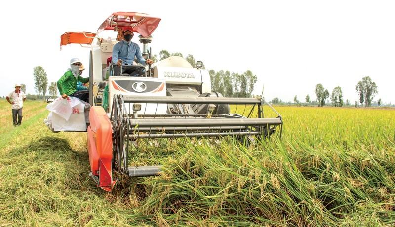 Ngành nông nghiệp vẫn khẳng định vai trò trụ cột trong nền kinh tế.
