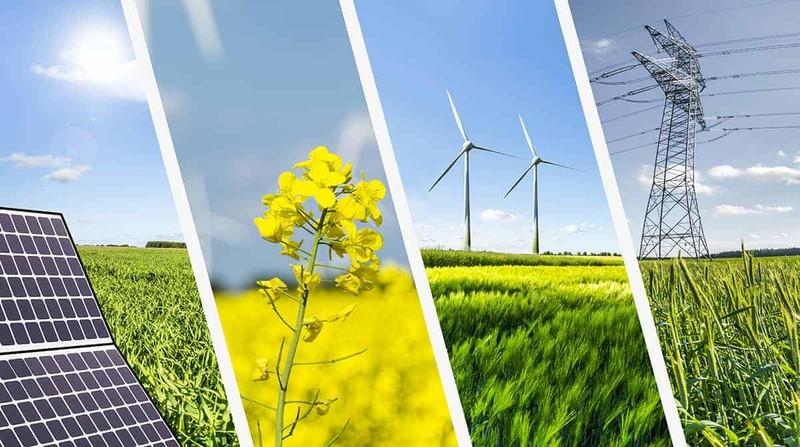 Thu hút đầu tư phát triển năng lượng tái tạo: Không làm theo phong trào