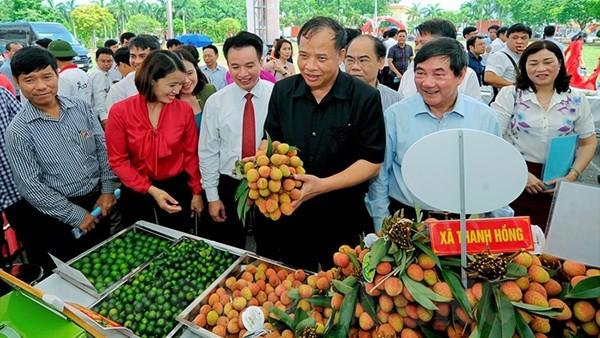 Vải thiều Thanh Hà là một sản phẩm nông nghiệp nổi tiếng.