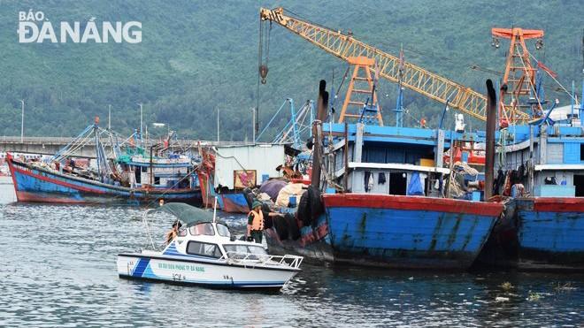 Lực lượng Bộ đội Biên phòng nhắc nhở các ngư dân chằng chống, neo đậu tàu cá an toàn tại âu thuyền Thọ Quang. (ảnh Báo Đà Nẵng)