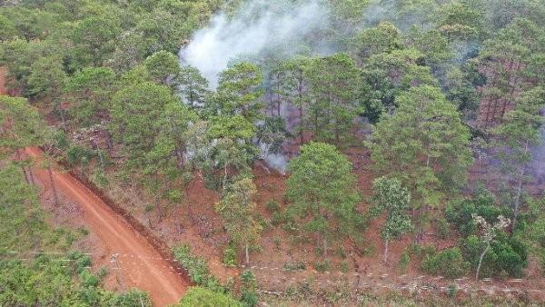 Người dân vẫn đốt rừng khi quyết định thu hồi của UBND huyện Bảo Lâm đã ban hành.