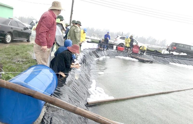 """""""Tiếp sức"""" người dân khôi phục sản xuất nuôi trồng thủy sản"""