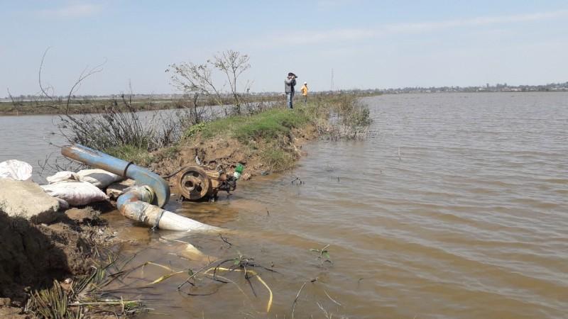 Dự án trồng rừng tại khu bảo tồn Tam Giang - Cầu Hai: Cây chết trắng, vẫn ký nghiệm thu chăm sóc rừng