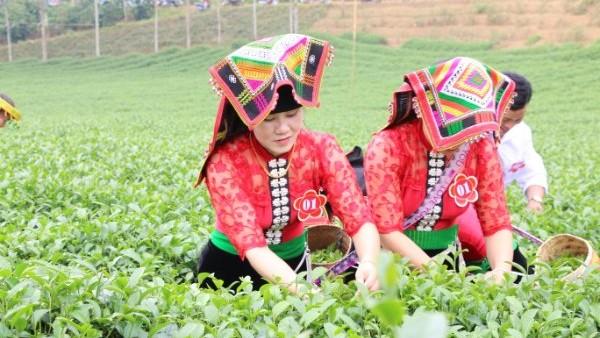 Người dân Thuận Châu hăng hái tham gia thi đua lao động sản xuất.