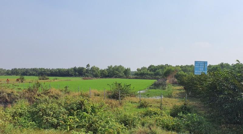 Dự án Minh Thành đã có giá cao gấp nhiều lần so với thời điểm Cty Kim Oanh mua.