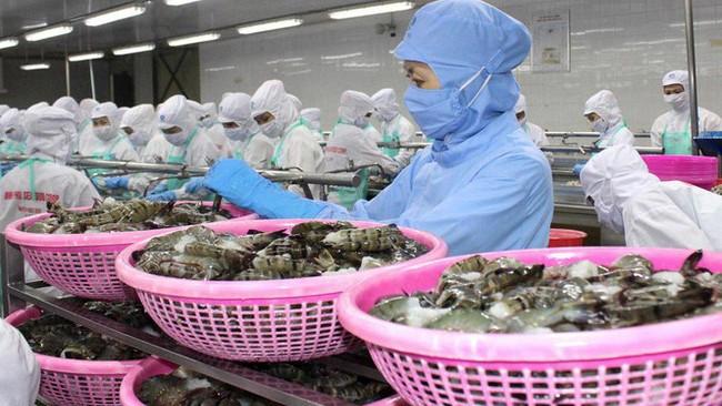 Thủy sản là một trong những ngành hàng có nhiều tiềm năng thâm nhập vào thị trường Bắc Âu.