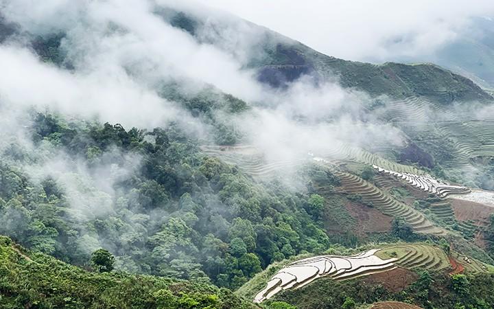 """Một góc Tà Xùa, điểm đến """"săn mây"""" ưa thích của đông đảo khách du lịch."""