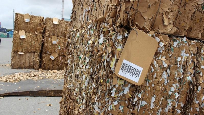 Hải quan xử lý dứt điểm phế liệu tồn đọng tại cảng biển