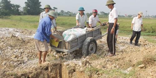 Nghệ An huỷ 10 tấn lợn thịt, công bố dịch heo tai xanh