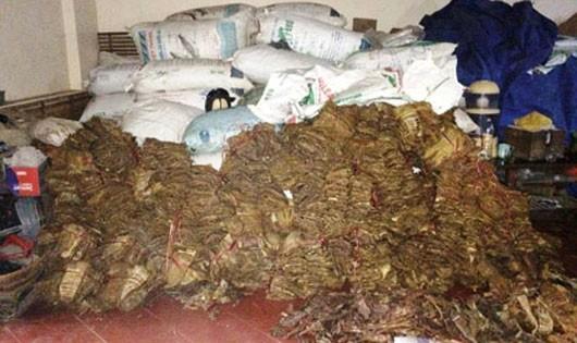 Hơn  2,6 tấn măng khô tẩm hóa chất được thu giữ tại cơ sở chế biến măng