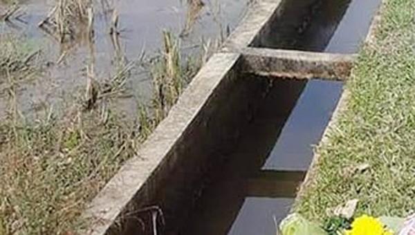 Hoảng hồn phát hiện thi thể mắc kẹt dưới mương nước