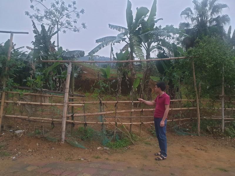 Ông Hoàng Đức Tâm (trú tại khu 5, xã Tân Phú, huyện Tân Sơn-người trúng đấu giá) chỉ khu đất của gia đình ông đã được UBND huyện Tân Sơn cấp sổ đỏ, nhưng đến nay vẫn chưa nhận được đất.