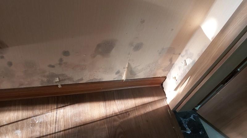 """Nghệ An: Nhận căn hộ được 6 tháng, cư dân Tecco """"kêu trời"""" vì thấm dột"""