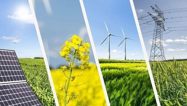 VBF khuyến nghị khuyến khích đầu tư tư nhân vào phát triển năng lượng tái tạo