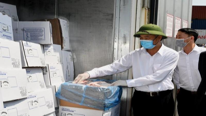 Kiểm tra công tác kiểm dịch và thông quan nhập khẩu thịt lợn tại cảng Hải Phòng.