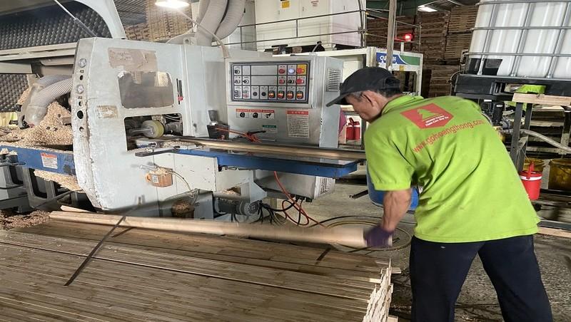 Sản xuất gỗ ghép thanh tại Công ty Hoàng Thông.