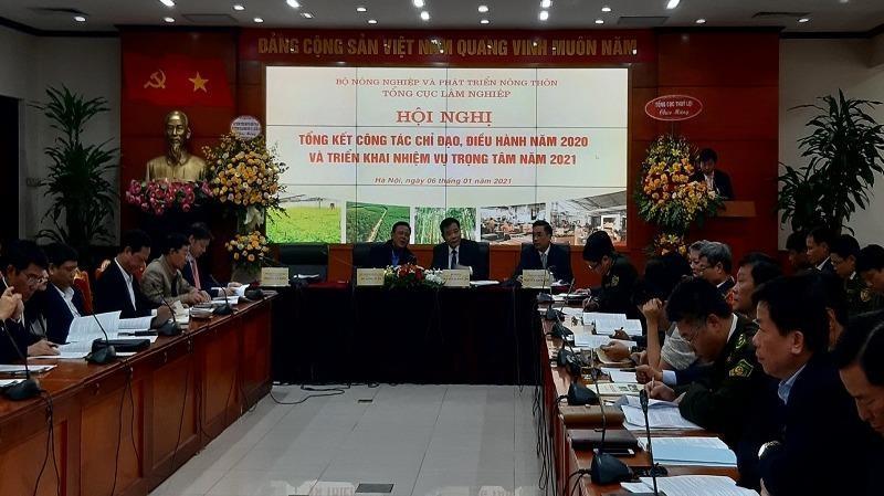 Bộ trưởng NN&PTNT Nguyễn Xuân Cường:  Chưa yên tâm về tỷ lệ che phủ rừng!