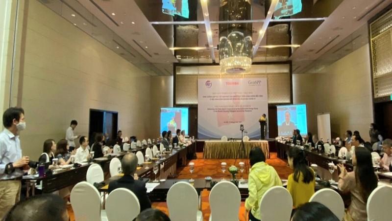Việt Nam - Nhật Bản hợp tác phát triển năng lượng bền vững hậu Covid-19 ở tiểu vùng Mekong