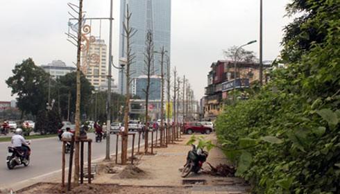 Từ 1/8 Hà Nội trồng lại cây trên đường Nguyễn Chí Thanh