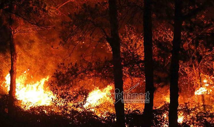 Rừng Hà Nội cháy lớn trong đợt nắng nóng lịch sử