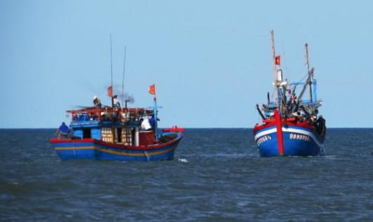 Không khai thác hải sản tầng đáy 20 km vào bờ ở biển miền Trung