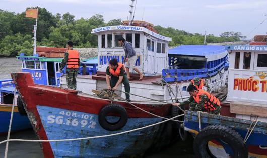 Cán bộ chiến sỹ Đồn Biên phòng Cần Thạnh giúp dân neo đậu phương tiện an toàn. Ảnh: Nguyễn Đức Thắng (Biên phòng TP HCM)