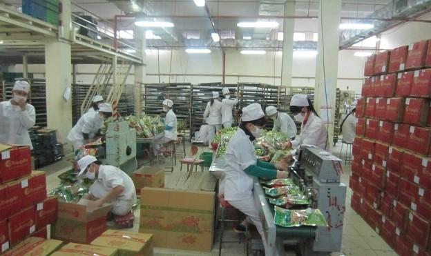 Tết này công nhân Nhà máy bánh kẹo Tràng An 3 được thưởng thế nào?
