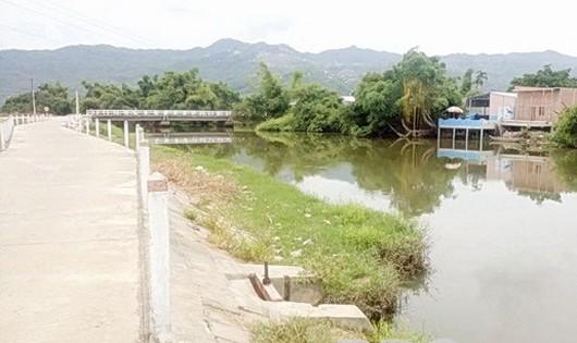 Hiện trường nơi chị Huỳnh Thị Thu Sương (26 tuổi) gieo mình xuống sông Đại An tự vẫn. Ảnh: Báo Bình Định.