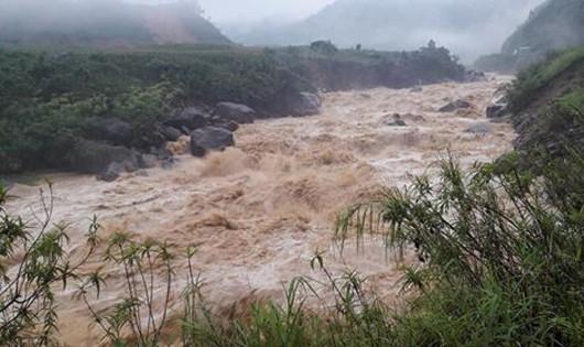 Nghiêm cấm vớt củi trên sông, kiểm soát chặt việc xả hồ chứa khi mưa lũ