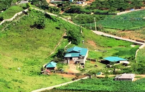 Nhà củatrùm ma tuý Nguyễn Văn Thuận lợp mái tôn xanh.Ảnh: Bá Đô