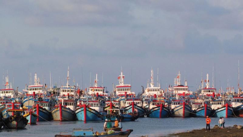 Hội Người đi biển Việt Nam lên án hành vi của nhóm tàu Trung Quốc trên Biển Đông