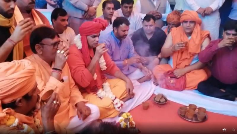 Hàng chục người ở Ấn Độ uống... nước tiểu bò để chống COVID-19