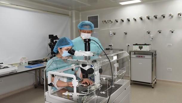 Vấn đề vô sinh hiếm muộn đang là gánh nặng trong lĩnh vực sản phụ khoa của Việt Nam. (Ảnh: PV/Vietnam+)