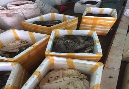 """Đà Nẵng: Triệt phá cơ sở chế biến """"chui"""" gần 1 tấn nội tạng động vật bẩn"""