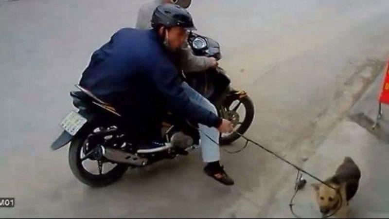 Triệu tập 2 đối tượng nghi trộm chó, giết người tại Ninh Bình