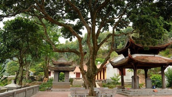 Vẻ độc đáo của ngôi chùa chốn rừng sâu, núi cao ở Hải Dương