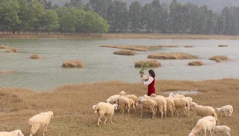 Vẻ đẹp nguyên sơ ở Đầm Cút tại xã Gia Hưng huyện Gia Viễn, tỉnh Ninh Bình
