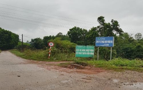 Con đường dẫn vào Dự án nuôi tôm  và khu rừng ngập mặn