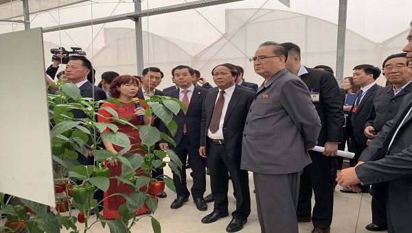 Phái đoán cấp cao của Triều Tiên thăm tổ hợp sản xuất ô tô Vinfast tại Hải Phòng