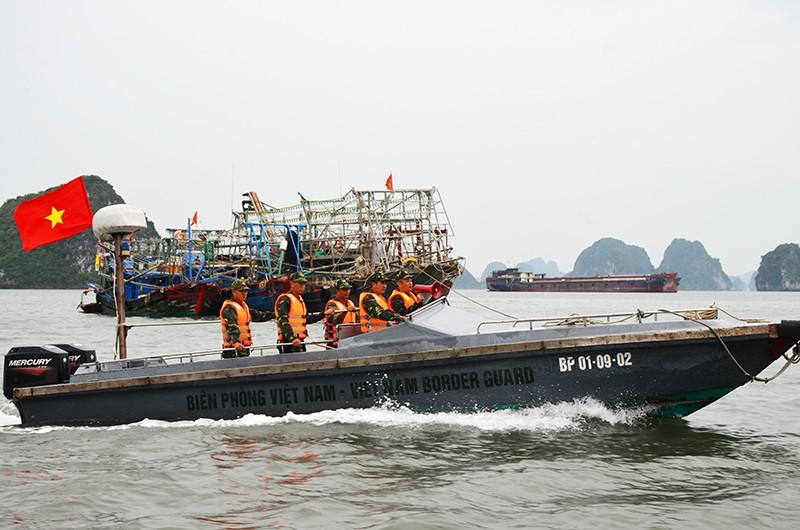 Bộ đội Biên phòng tỉnh Quảng Ninh, vận động, đưa ngư dân vào bờ tránh bão