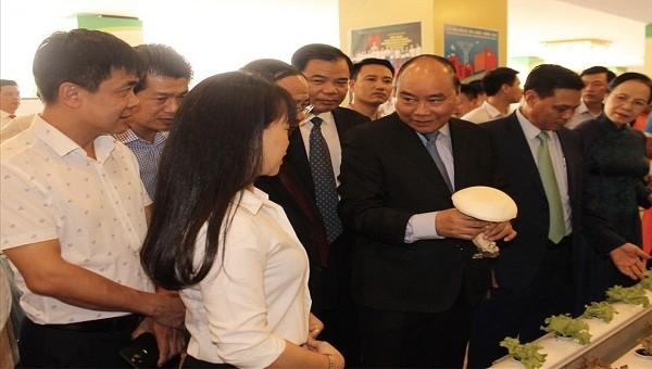 Thủ tướng Chính phủ tham quan khu trưng bày sản phẩm nông sản