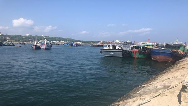 Bạch Long Vĩ làm gì để phát triển thành trung tâm hậu cần nghề cá?