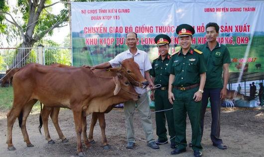 Hỗ trợ 100 con bò sinh sản cho người nghèo ở Kiên Giang
