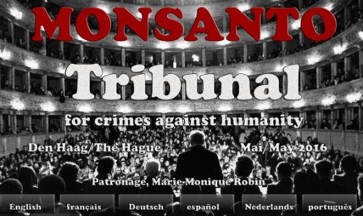 Tội đồ của môi trường toàn cầu (Kỳ cuối): Giành lại thế giới từ tay Monsanto