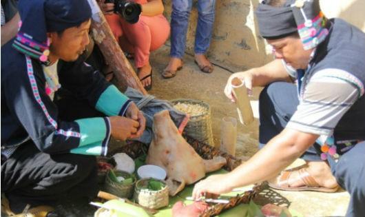 Xem bói gan lợn đầu năm của người Hà Nhì (Ảnh Đ.Loan)